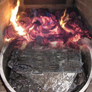 Fuoco+schede-bruciate